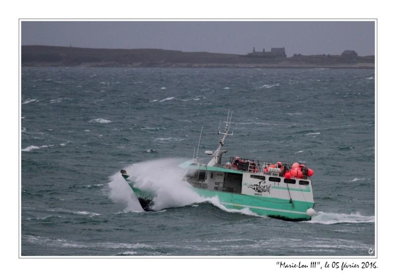 [VIE DES PORTS] Quelques bateaux de pêche (sur nos côtes Françaises) - Page 21 20160216