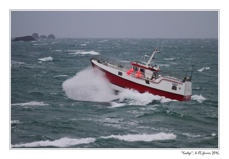 [VIE DES PORTS] Quelques bateaux de pêche (sur nos côtes Françaises) - Page 21 20160217