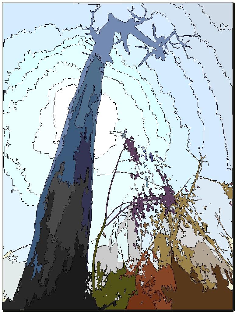 Un arbre mort 10010