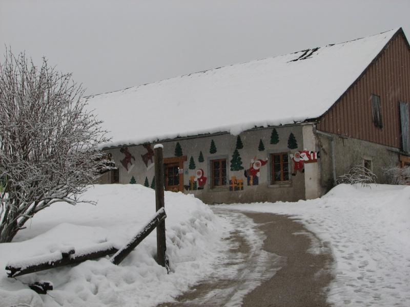 Jumper se prépare pour le ski !!! 2012_j12