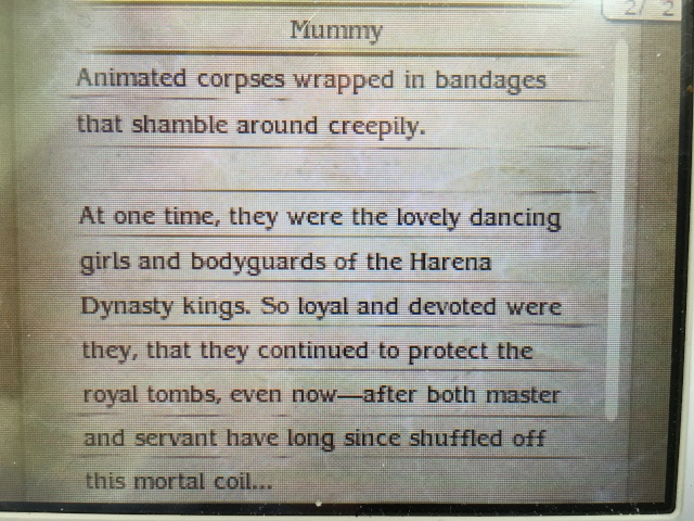 Bravely Second. Image40