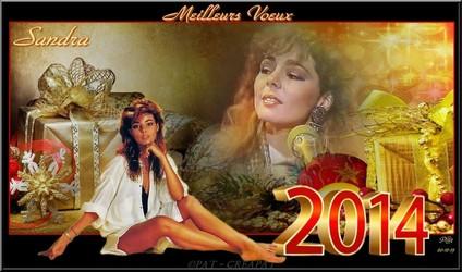 Bannières et photos sur les  chanteurs et chanteuses des années 80 (Créa Pat ) - Page 2 Sandra10