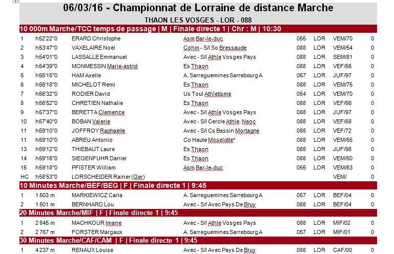 Champ; de Lorraine de distances - Thaon les Vosges - 6 Mars  0_lor_10