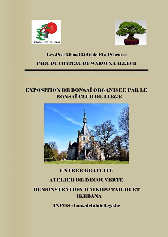 Bonsaï - Page 4 Expo_b10