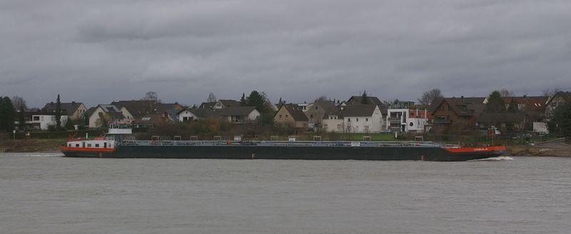 Was alles so auf dem Rhein schwimmt Imgp0918