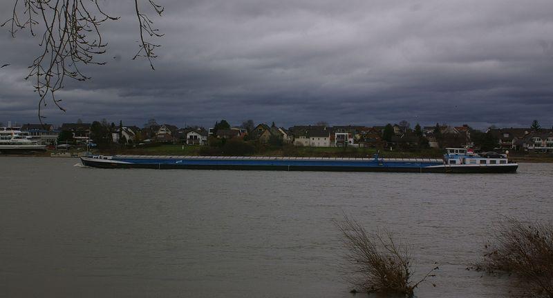 Was alles so auf dem Rhein schwimmt Imgp0920