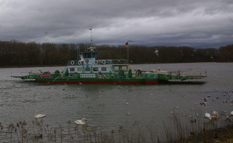 Was alles so auf dem Rhein schwimmt Imgp0923