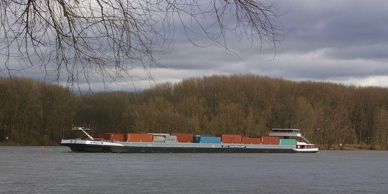 Was alles so auf dem Rhein schwimmt Imgp0925