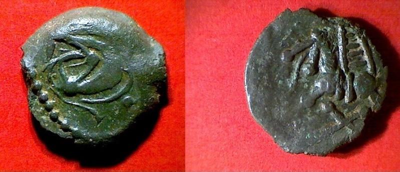 Les bronzes au loup chez les bituriges  Bit2f310