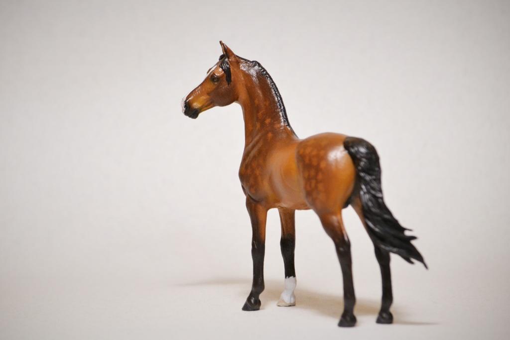 Homemade models painted by Dark Pegasus Studio! :) Dsc_0618