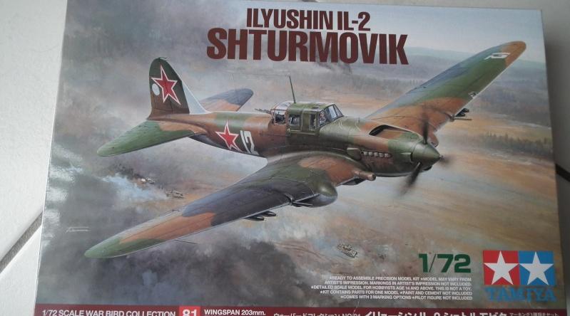 (tamiya) Ilyushin IL 2 shturmovik      FINI Dscf5710
