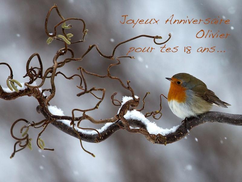 Expériences d'Olivier - Page 3 Snowy-10