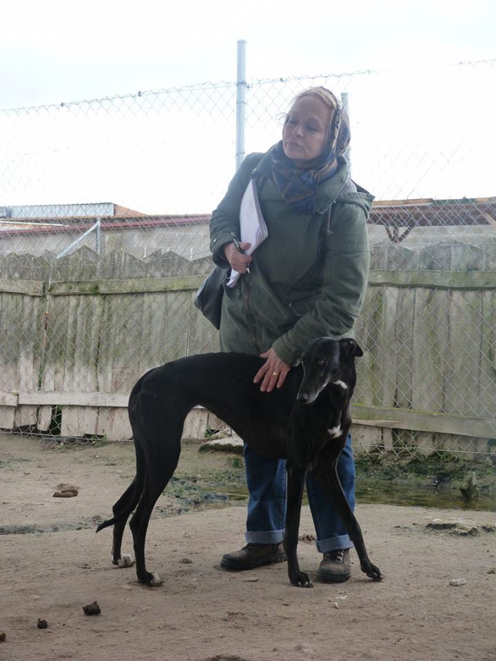 SHUMALIA élégante princesse noire, merveilleuse de coeur et de corps Adoptée  Aaaaa110