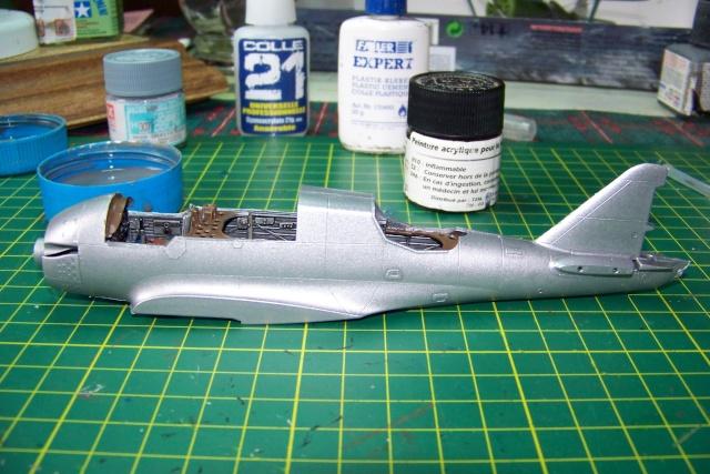 PZL P 23b Karas :  Mirage 1/48 100_0235