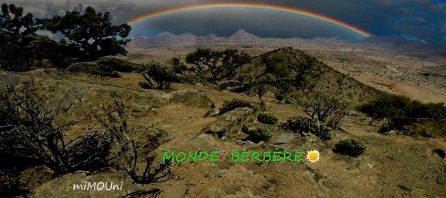 C'est la guerre donc en virtuel entre Imazighen monde-berbere et souss-com Mondeb10