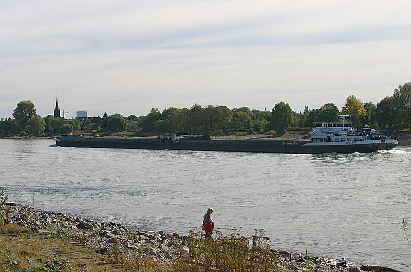 Kleiner Rheinbummel am Mittelrhein - Koblenz bis Bonn - Sammelbeitrag Img_8133
