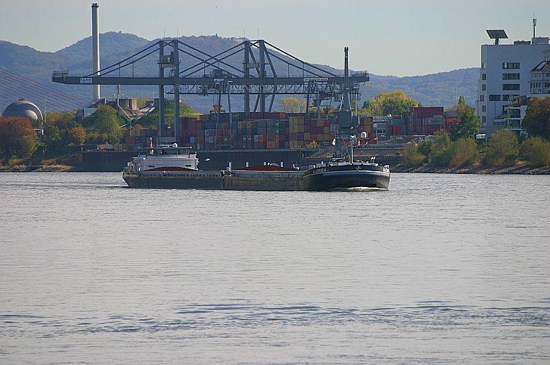 Kleiner Rheinbummel am Mittelrhein - Koblenz bis Bonn - Sammelbeitrag Img_8139