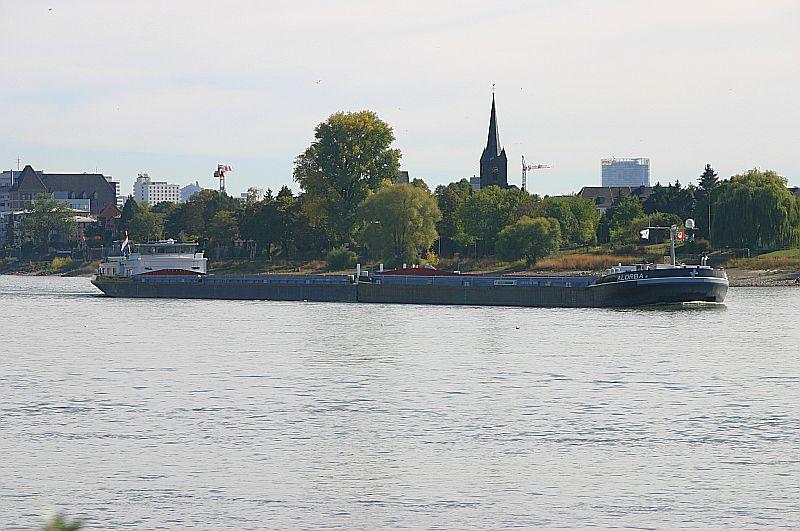 Kleiner Rheinbummel am Mittelrhein - Koblenz bis Bonn - Sammelbeitrag Img_8140