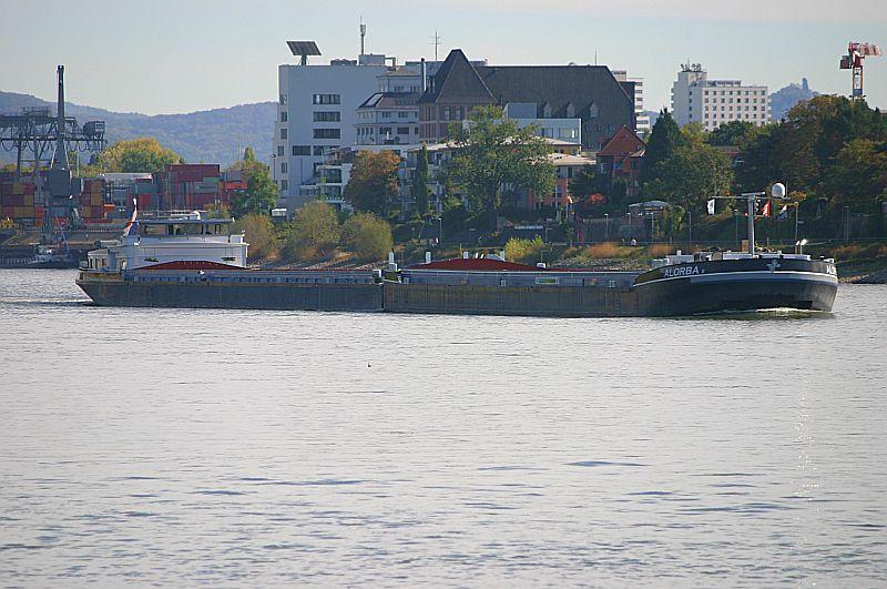 Kleiner Rheinbummel am Mittelrhein - Koblenz bis Bonn - Sammelbeitrag Img_8141