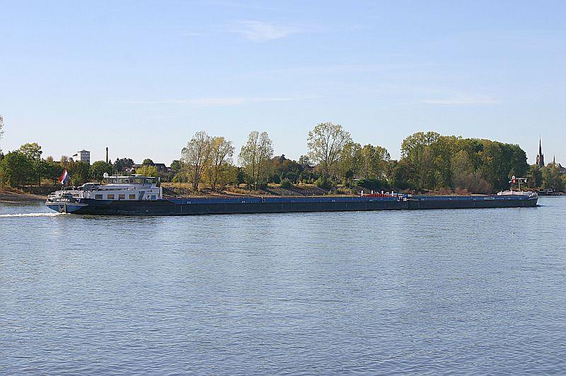Kleiner Rheinbummel am Mittelrhein - Koblenz bis Bonn - Sammelbeitrag Img_8147