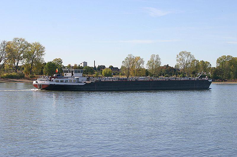 Kleiner Rheinbummel am Mittelrhein - Koblenz bis Bonn - Sammelbeitrag Img_8151