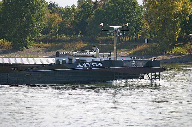 Kleiner Rheinbummel am Mittelrhein - Koblenz bis Bonn - Sammelbeitrag Img_8160