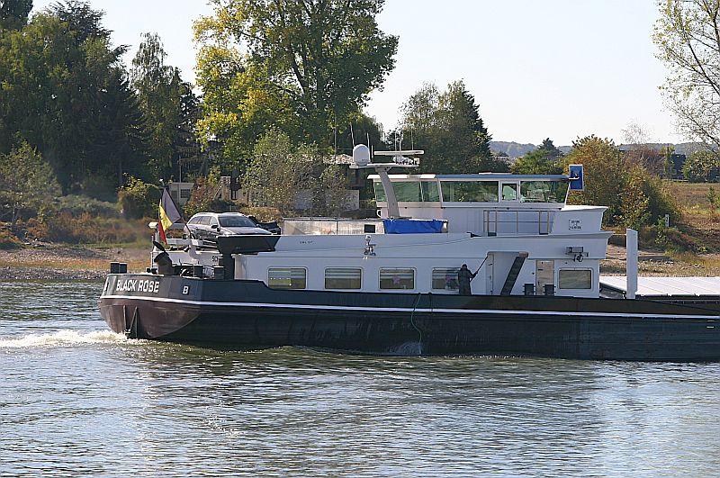 Kleiner Rheinbummel am Mittelrhein - Koblenz bis Bonn - Sammelbeitrag Img_8163