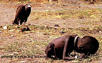L'aigle attendait la fin de l'agonie pour passer a table Enfant10