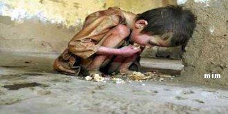googline s'inquiète de la faim et la soif en Afrque Mimoun14