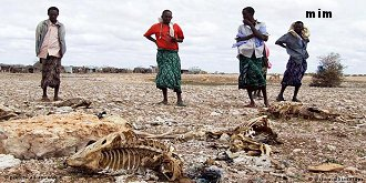 googline s'inquiète de la faim et la soif en Afrque Mimoun17