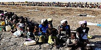 googline s'inquiète de la faim et la soif en Afrque Mimoun18