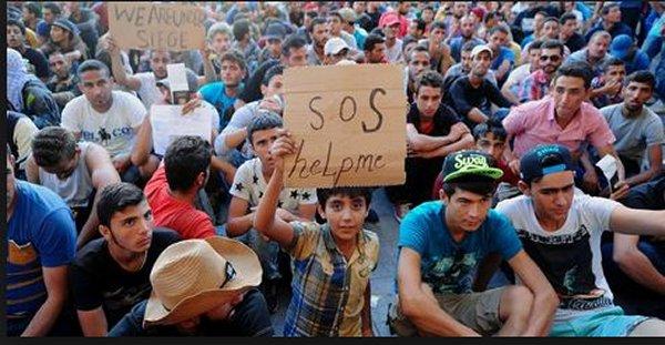 chtoukapresse invoque le drame Syrien Syrie_12