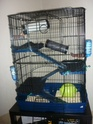 Vends cage Montpellier 34  P1030813