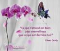 Citations ou petites réflexions qui vous inspirent  - Page 5 2759_310