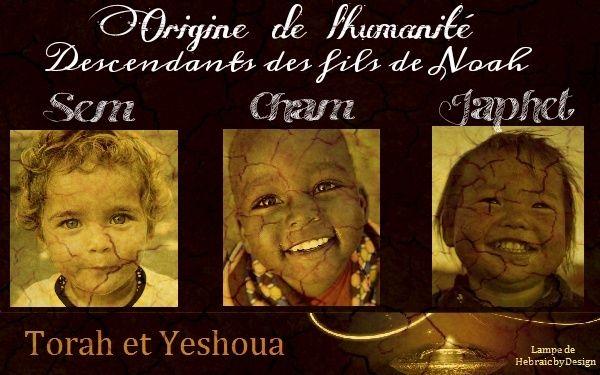 Les origines de l'humanité Sem Cham et Japhet 3 fils de Noah Sem_ch11