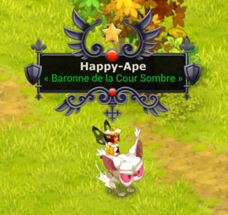 Candidature de Happy-Ape Api12