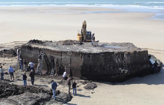 Une découverte archéologique de 5000 ans faite à Soulac sur Mer 561x3610