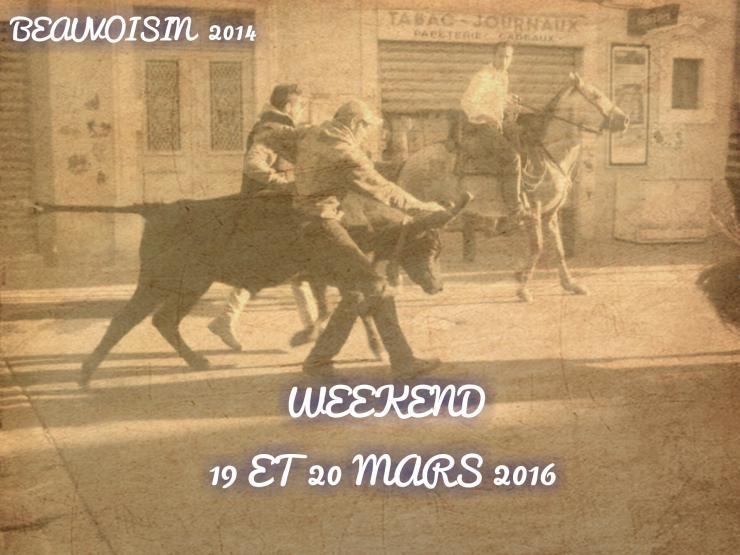 WL BIOU : WEEK 19/20 MARS 2016 + 19 MANIFESTATION    Beauvo10