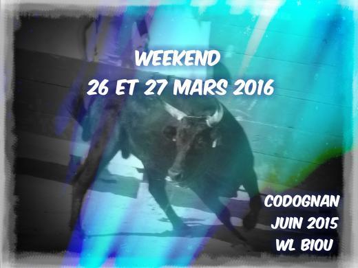 WL BIOU : WEEK 26/27 MARS 2016 + 24 MANIFESTATION   Fin_ma11