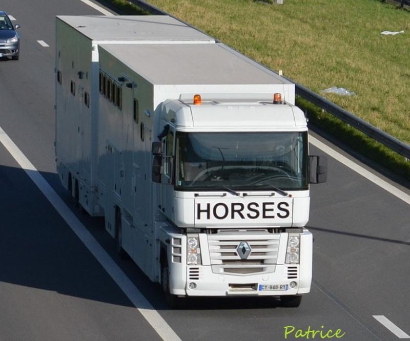 Transports de chevaux - Page 6 281p10