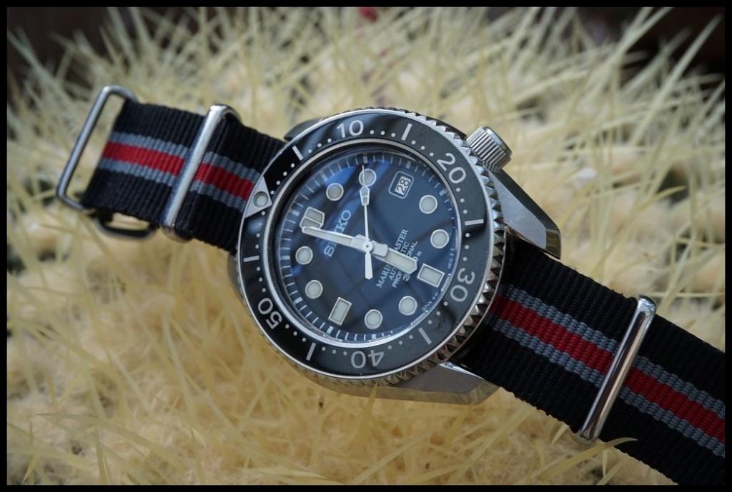 Votre montre du jour - Page 32 Rtdsc013