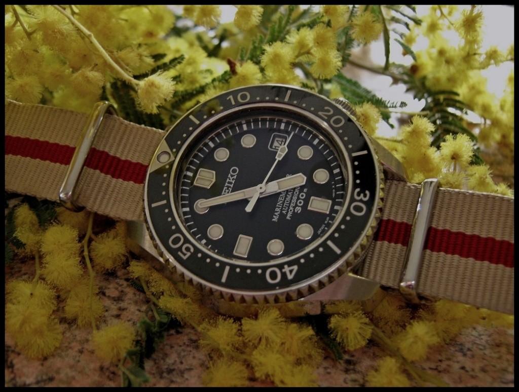 Votre montre du jour Rtimg_17