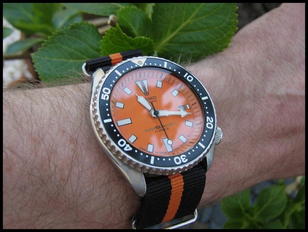 Votre montre du jour - Page 2 Rtimg_19