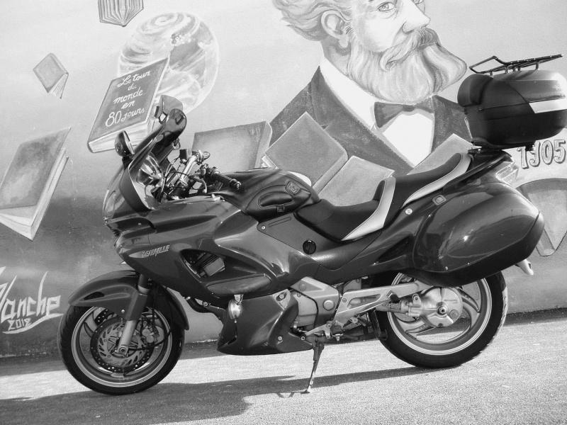 Concours photos de Fevrier noir et blanc P1010111