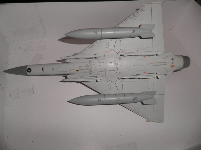 Mirage 2000 N & D 1/48 - Page 2 P2080010