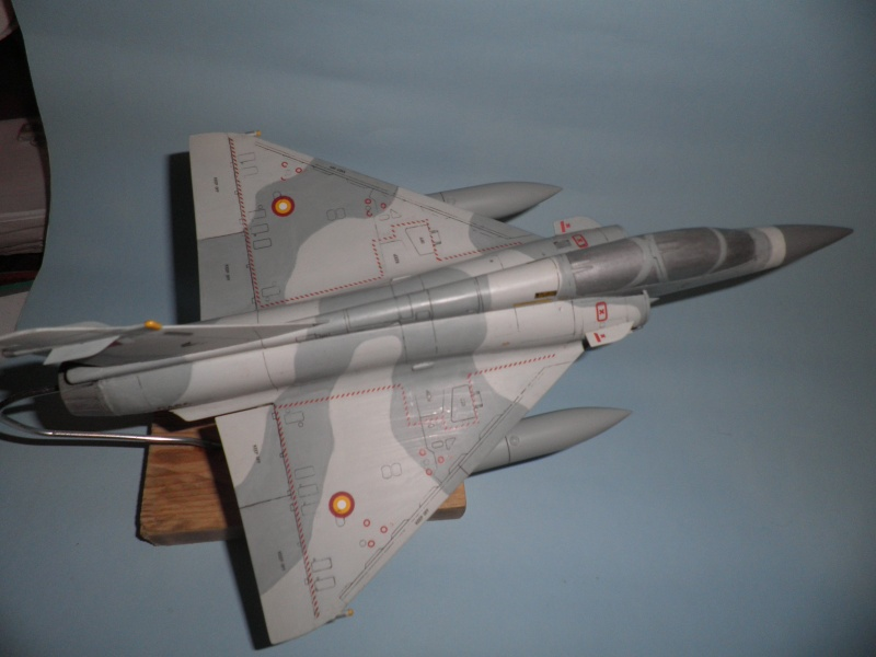 Mirage 2000 N & D 1/48 - Page 2 P2080012