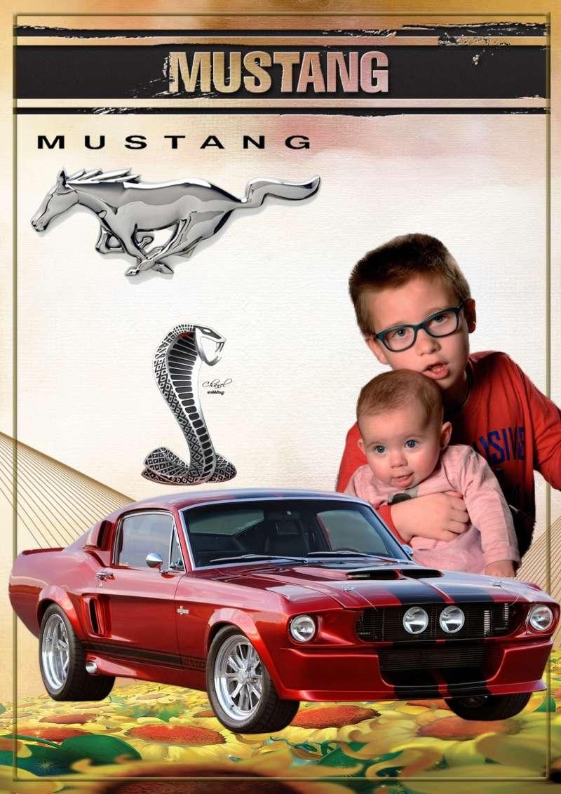 Demande de montage  Mustan11