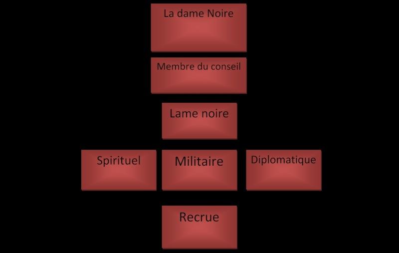 Les sections et grades Hiérarchique  Organ_10