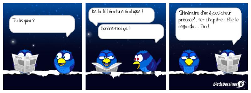 Quelques Birds ? Pas_d_15