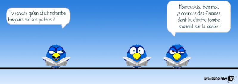 Quelques Birds ? Pas_d_16